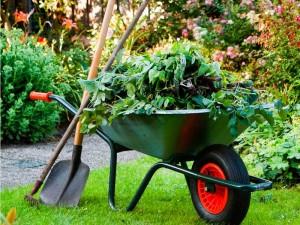 JD Garden Services